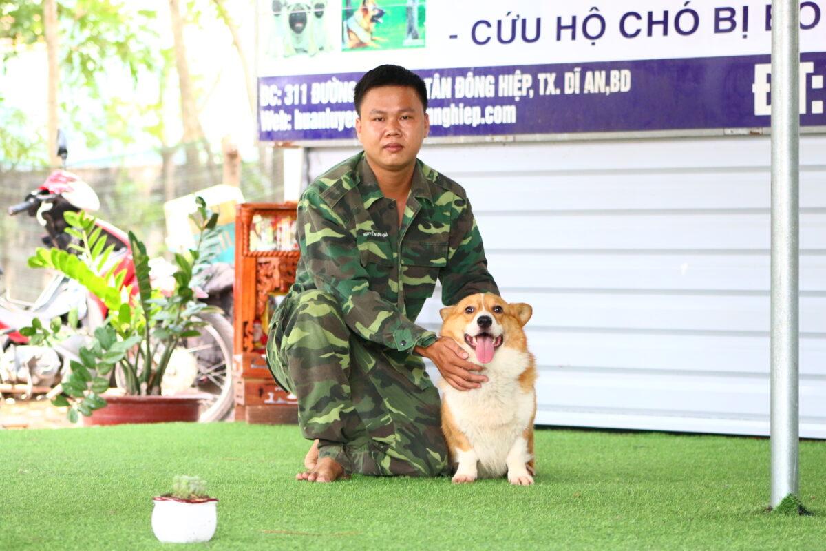 huấn luyện chó corgi