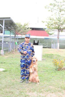 Kinh nghiệm chọn trường huấn luyện chó quận Bình Tân ưng ý